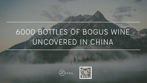6000 bottles of bogus wine uncovered in china