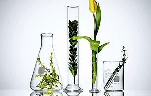 Naturesperfectalchemy prirodn kozmetika