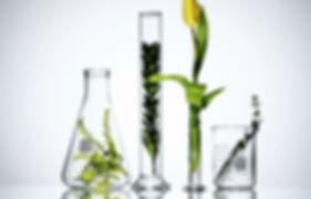 izrada prirodne zdrve kozmetike, individualni pristup, vrhunski kvalitet eteričnih ulja