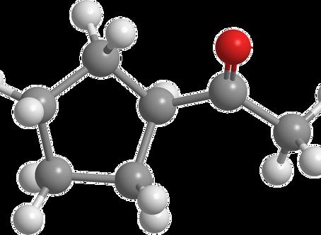 KETO DIJETA - Šta su to ketoni i da li su zdravi? – II deo