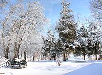 specialsaving_winter.jpg