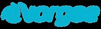 Vorgee_logo.png