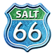Salt 66 logo.png