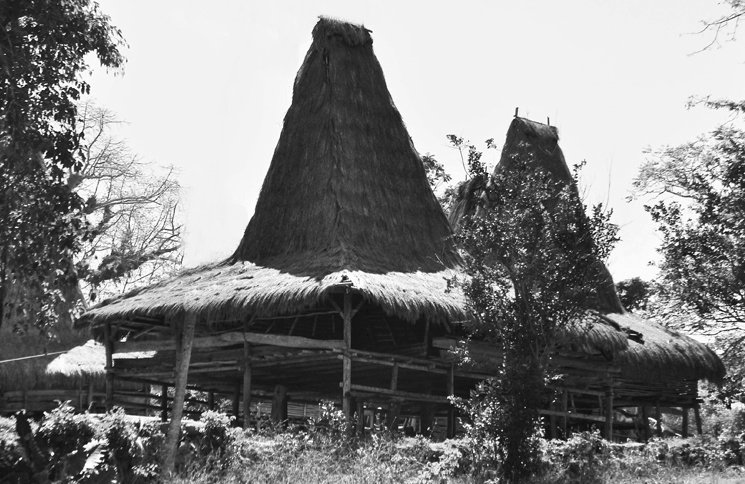 maison traditionnelle sumba