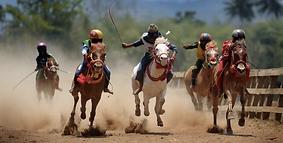 courses de chevaux sumba
