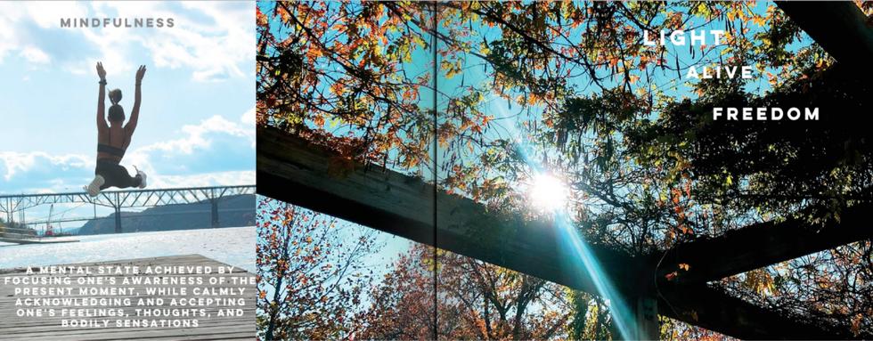 Screen Shot 2020-12-03 at 5.15.59 PM.png