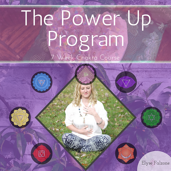 The Power Up Program.png