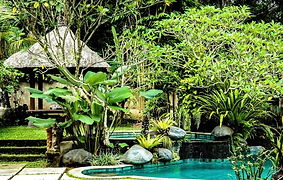 Villa jungle.jpg