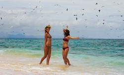 raynagroupbirds2