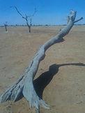 Desert near Chibuwe.jpeg
