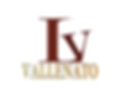 LETZING VALLENATO logo png.png