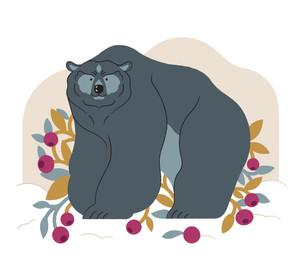 Personal work / bear