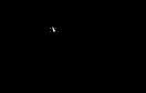 Salty Bonz 1 Color Logo.png