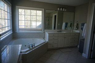 Before - Tub and His Vanity