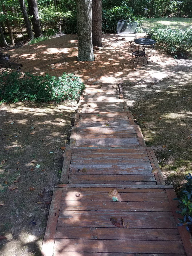 Tree Deck Before