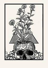 Nació una flor