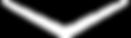 flecha-scroll.png
