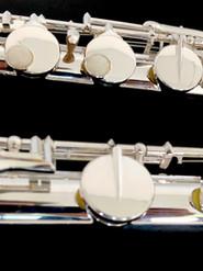 Flauta ALTO Daryl Anton en Venta.jpg