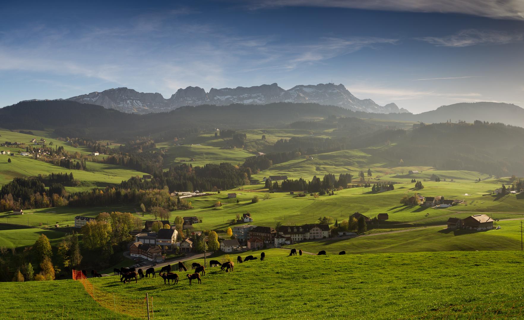 Appenzell.ch (1).jpg