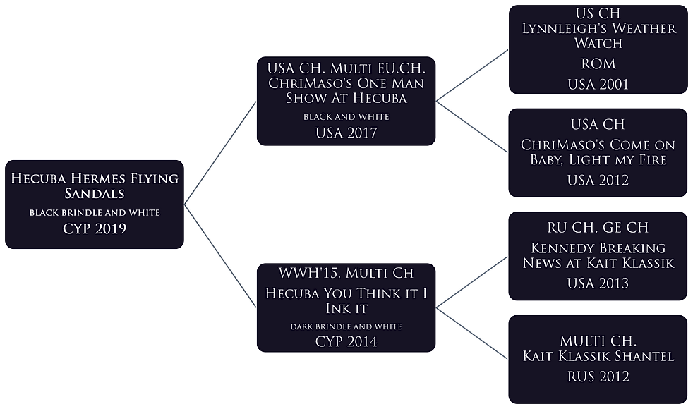 HERMES pedigree.png