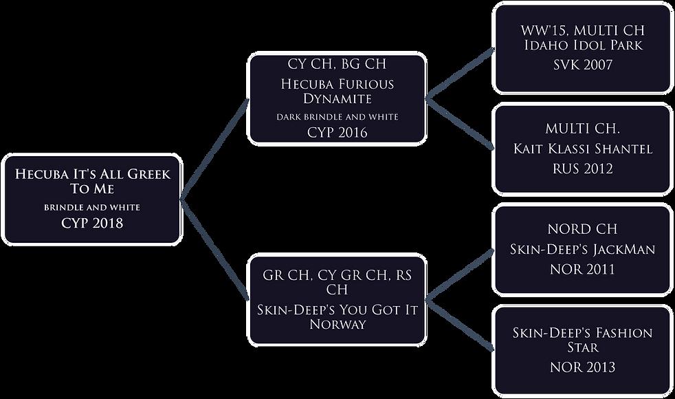 OUZO pedigree.png