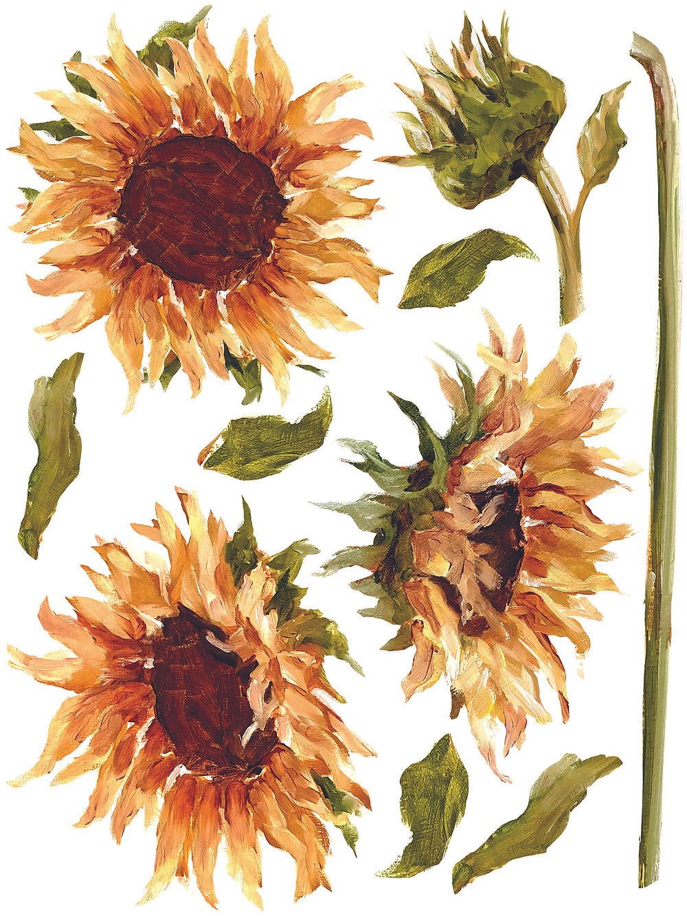 """New 12"""" x 16"""" format transfer pad featuring images of hand painted flowers."""