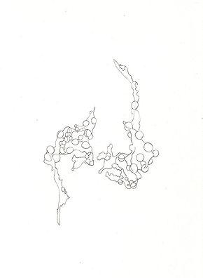seaweed2.jpg