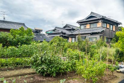 SetouchiResumen2018Web-104.JPG