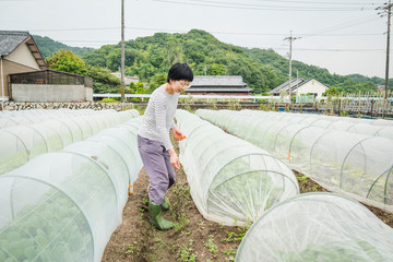 SetouchiResumen2018Web-48.JPG