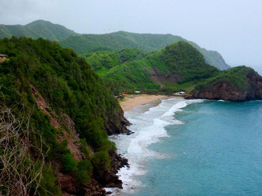 Into The Wild - Río Caribe