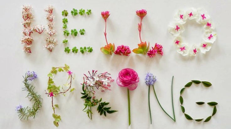 Six Steps to Joyful Weight Loss,