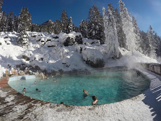 Favorite Things To Do in Jackson Hole