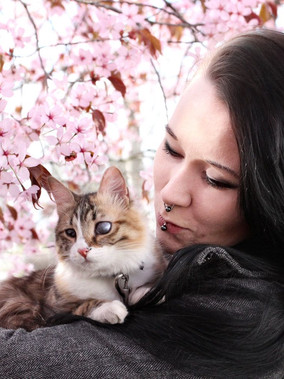 [Guest Post] Life and Adventures With Differently Abled Cats by Krista Rutanen
