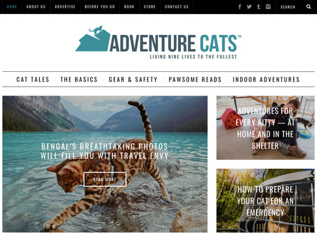 Resource: Adventure Cats