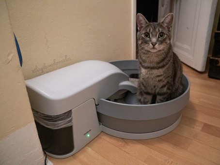 New Simply Clean® Automatic Litter Box by Petsafe