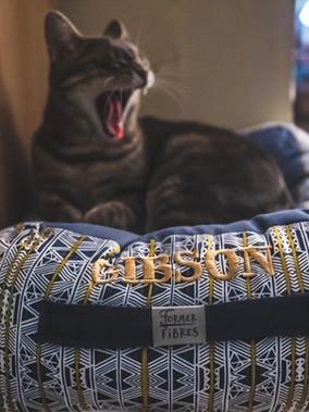 Former Fibres Eco-Friendly Pet Bed