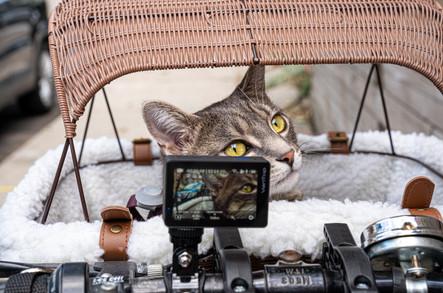 VanTop Moment 6S 4K/60FPS Action Camera