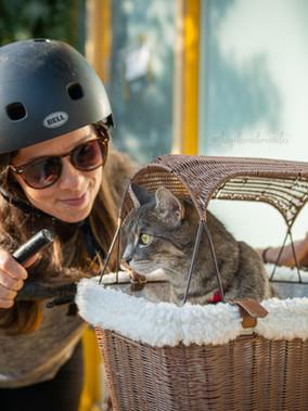 Happy Ride™ Wicker Bicycle Basket