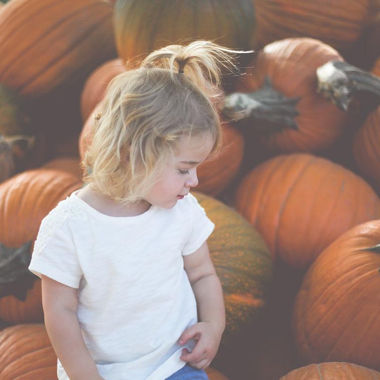 Pumpkin Patch Mini
