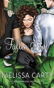 Fallen Soul front cover 8.jpg