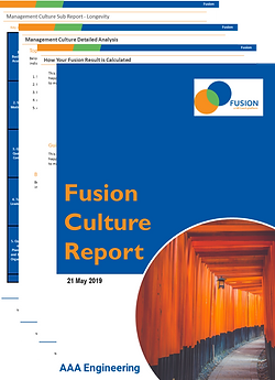 Fusion Report.png