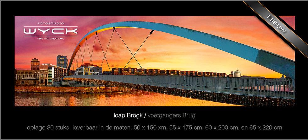 Voetgangersbrug, 50 x 150 cm Acryl-Dibond