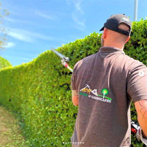 Hedge Trimming at ADM Home & Gardenscapes