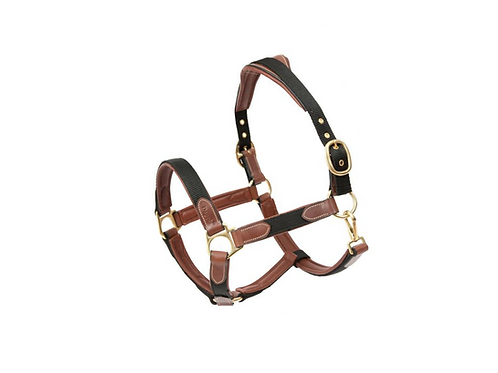 Nylon Leather Halter Dapple PONY