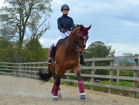 Planning your unprecedented Horsey Summer