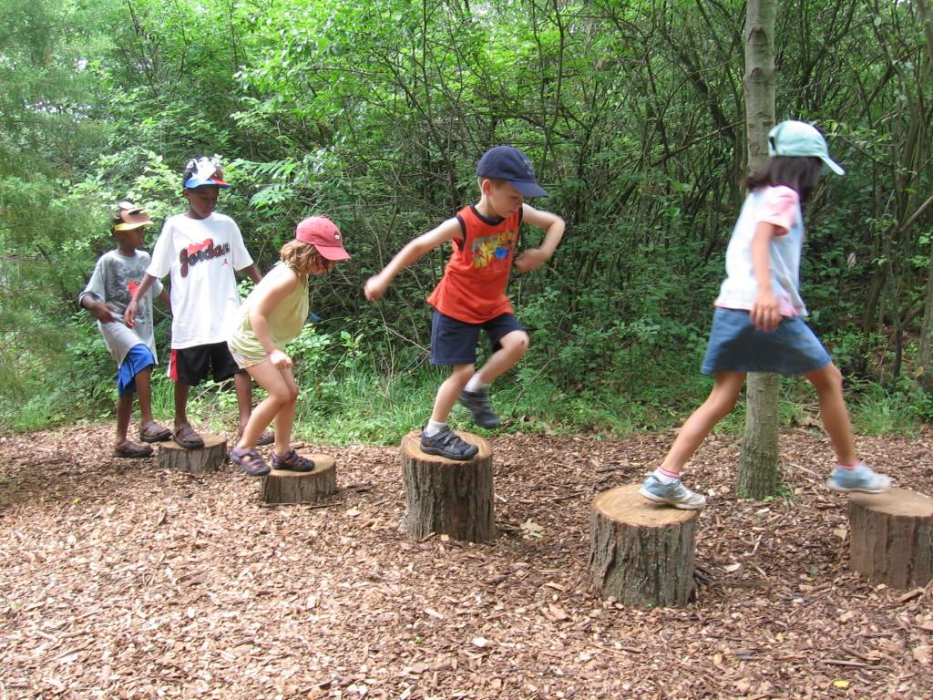stepping logs