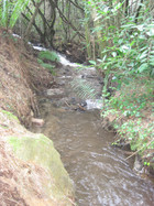 A trench was dug that allowed the flow of water to continue downstream avoiding the blockage a detor of around 12 meters
