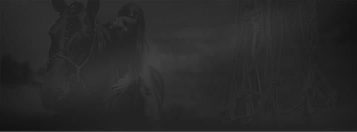 krelovi_webdesign_header2.png
