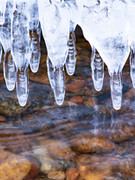 icicles off dock 1