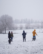 Snowy social distance walks